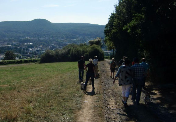 Wanderung zur Hemmessener Hütte
