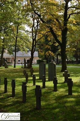 Von kulturhistorischer Bedeutung: Grabdenkmäler von Gefallenen des I. Weltkriegs am Salzburger Kommunalfriedhof.