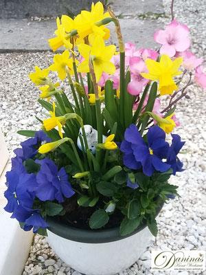 Grabschale Frühjahr mit blauen Stiefmütterchen und Märzenbecher