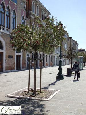 Venedig Zattere