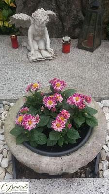 Grabschale mit rosa Frühlingsblumen
