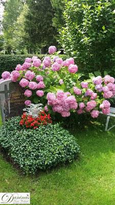 Idee Grabbepflanzung im Sommer - Hortensie