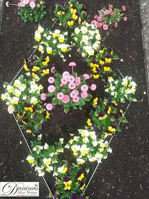 Grabgestaltung Frühling mit Stiefmütterchen und rosa Bellis