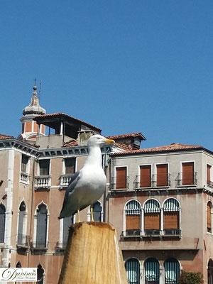 Venedig Mercato di Rialto