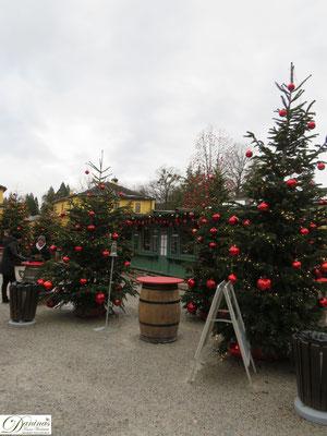 Hellbrunner Adventzauber in Salzburg - Weihnachtsmarkt mit 700 Nadelbäumen geschmückt mit 10.000 roten Kugeln