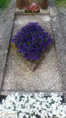 Grabgestaltung mit Kies, blauen und weißen Stiefmütterchen und Bellis