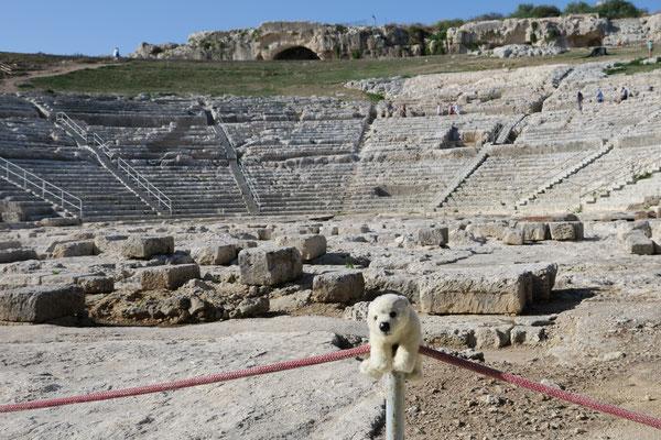 Ole im Amphitheater von Syrakus/Sizilien