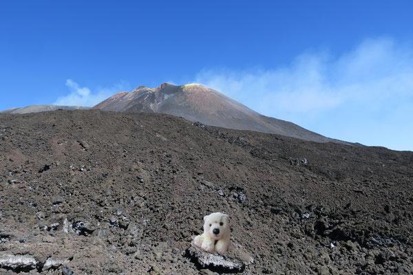 Ole vor dem gewaltigen Massiv des Ätna auf fast 3000m Höhe