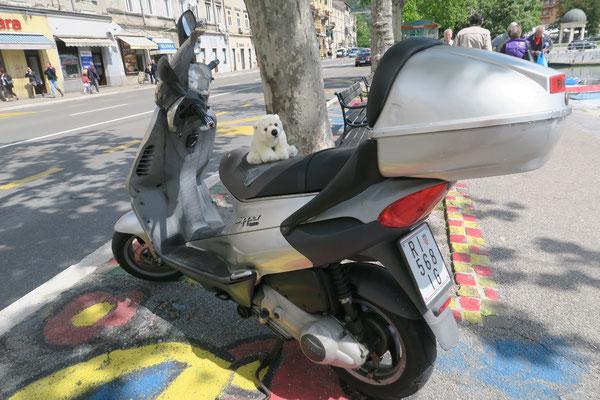 Ole fährt in Kroatien mit dem Roller