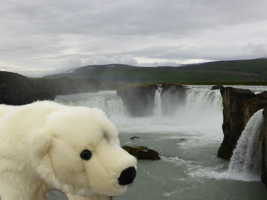 Ole am Godafoss-Wasserfall auf Island