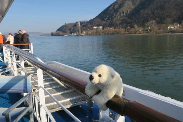 Ole auf Kreuzfahrt auf der Donau