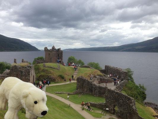 Ole hält an Loch Ness in Schottland Ausschau nach dem Ungeheuer Nessi