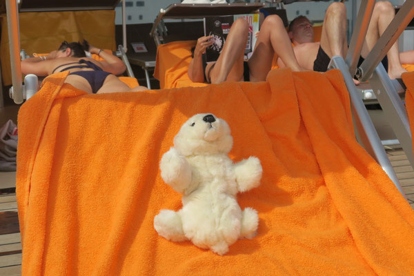 Ole räkelt sich auf dem Schiff auf der Sonnenliege.