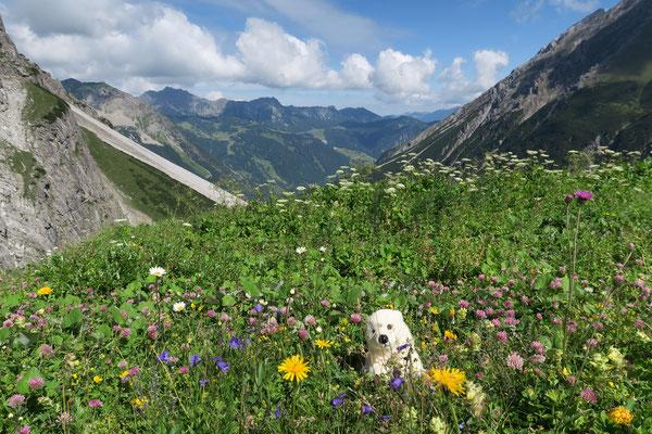 Ole fährt ins Hochgebirge Lüner See Österreich