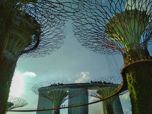Marina Bay Sands dai Gardens by The Bay, Singapore (Photo by Gabriele Ferrando - LA MIA ASIA)