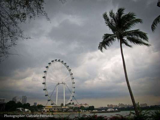 Singapore - Gardens by The Bay (Photo by Gabriele Ferrando - LA MIA ASIA)