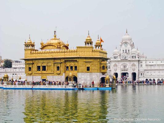 Palazzo d'oro di Amritsar - INDIA