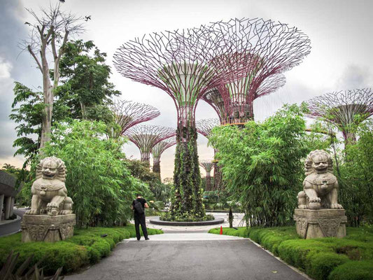 Gardens by the Bay a Singapore (Photo by Gabriele Ferrando - LA MIA ASIA)