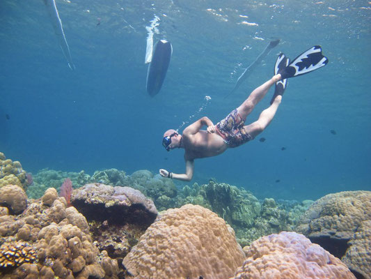 Snorkeling in Amed