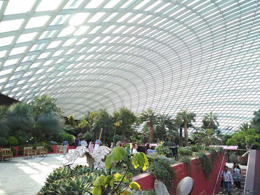 Flower Dome A Singapore (Photo by Gabriele Ferrando - LA MIA ASIA)