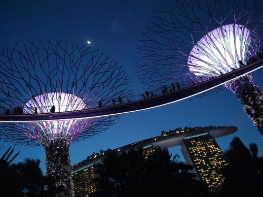 Marina Bay Sands e Supertree Groove by night, Singapore (Photo by Gabriele Ferrando - LA MIA ASIA)