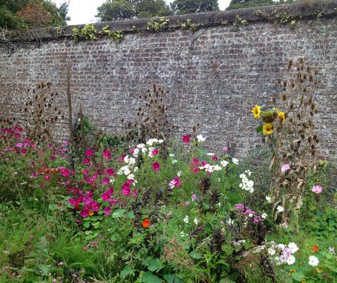 """Im """"walled garden"""" entsteht ein eigenes Mikroklima"""
