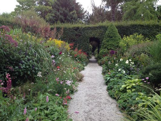 Auch in diesem Garten: ein phantastisches Staudenbeet ...