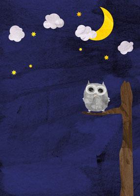 Postkarte Nachteule