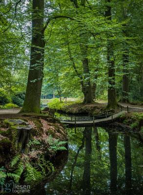 Landgoed de Braak (oktober 2018) Paterswolde, Groningen