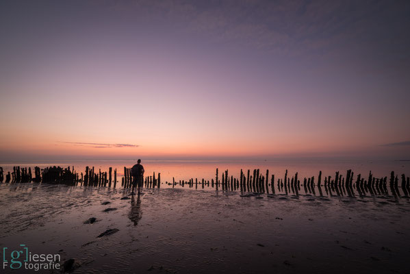 Soms moet je ook gewoon even genieten van de rust en kleuren (juli 2018) Moddergat, Friesland