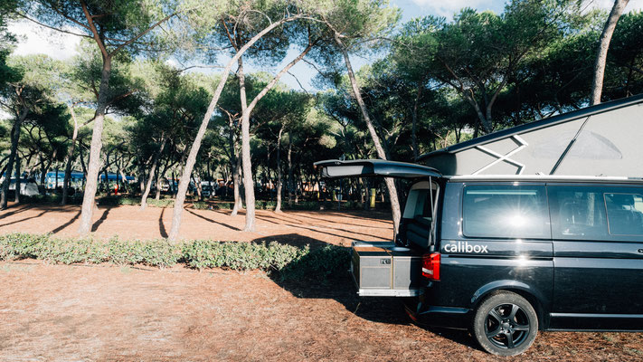 Campingplatz unter Pinienbäumen
