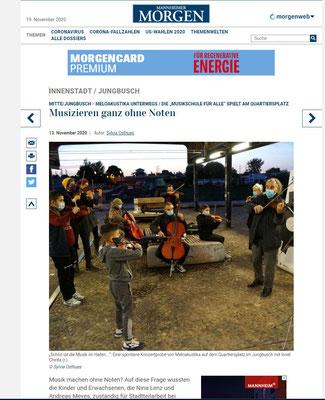 Mannheimer Morgen über Meloakustika 13.11.2020