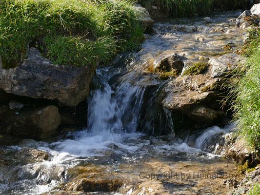 Gebirgsbach / Wasser 18