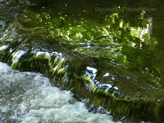 Uttinger Mühlbach / Wasser 2