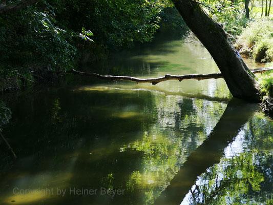 Singold, Großkitzighofen / Wasser 20