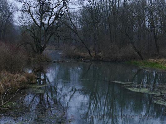 Altwasser / Jahreszeiten 38