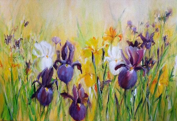 Iris, Acryl, 120x80