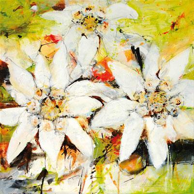 Edelweiß, Acryl, 50x50