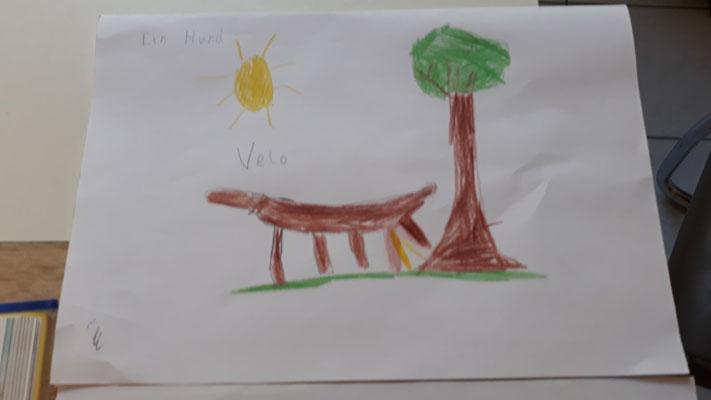 ... eine Mischung aus einem Hund und einem Velociraptor?