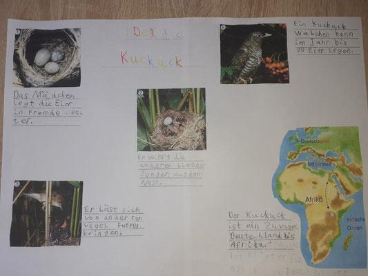 Celina hat aussagekräftige Fotos gesucht und mit passenden Texten kombiniert! TOLL!