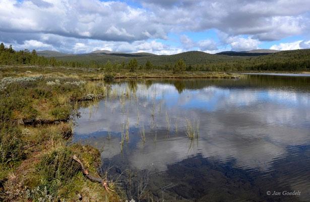 Am Furutjoenn, Norwegen