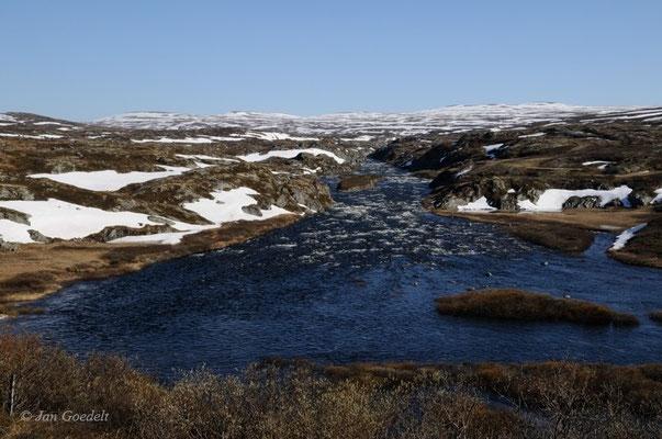 Hardangervidda im Frühsommer, Norwegen