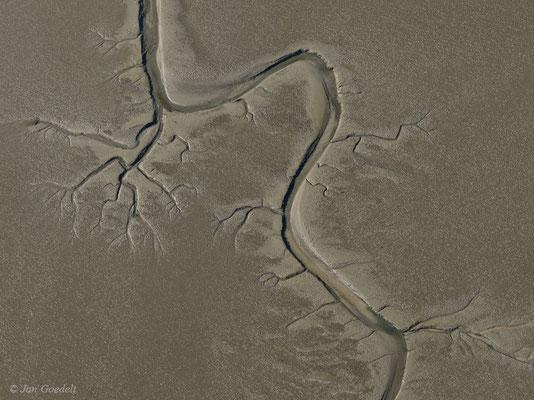 Priel im Schleswig-Holsteinischen Wattenmeer (Luftbild)