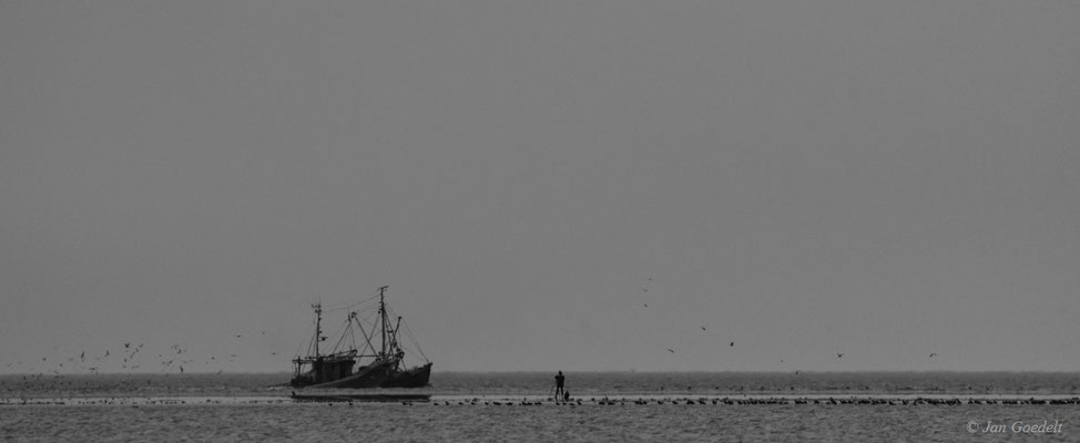 Krabbenkutter vor Westerheversand