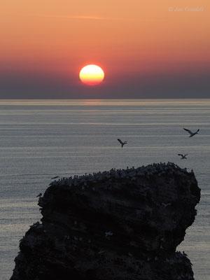 Sonnenuntergang über der Langen Anna