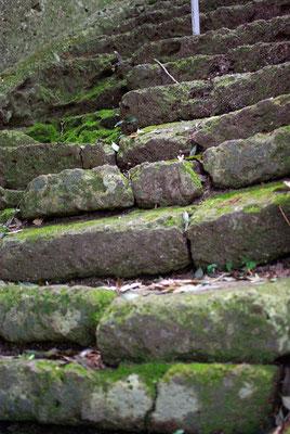 普門山蓮華寺(岩本観音)の階段