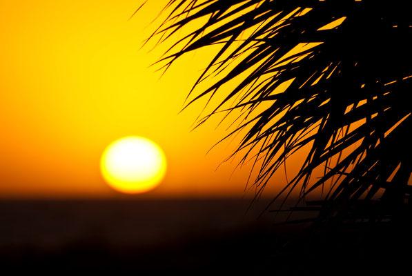Telephoto Honeymoon Island Sunset