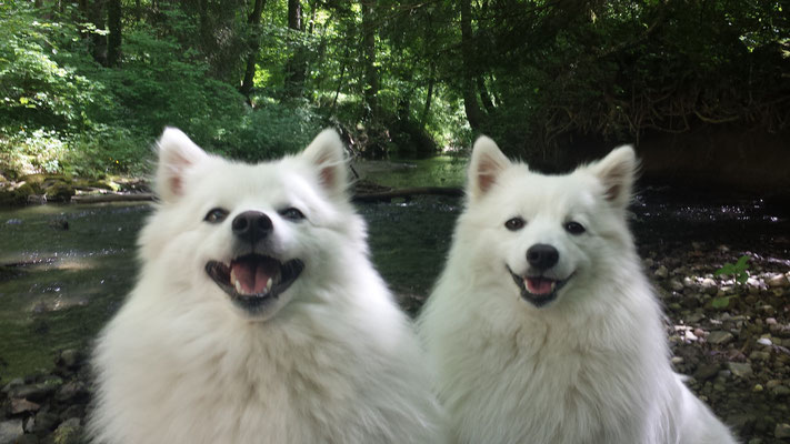 Hana und Aiko