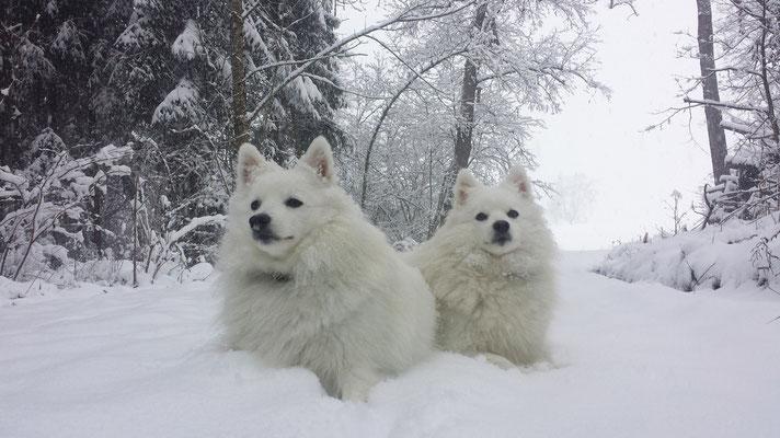 Aiko und Hana