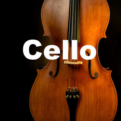 Cellounterricht  in Frankfurt Instrumentalunterricht Okatyev